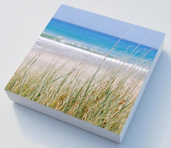 Beach grass photo blocks x 3 beach art - home decor, beach sea grasses wall art