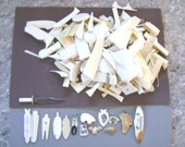 5 pounds of Ivory scrap pieces for scriming and carving