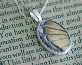 Tiger Swallowtail Real Butterfly Wing Jewelry