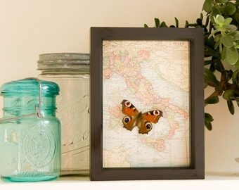 Framed Map of Italy Honeymoon Wedding Gift Butterfly Display