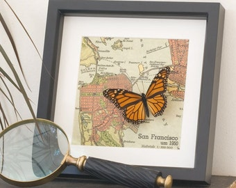 San Francisco Bay Area Map from Germany with real Monarch Butterfly