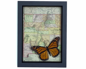 Framed Map of New Mexico with native Framed Monarch Butterfly