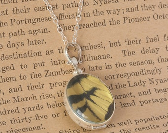 Butterfly Wing Jewelry with Tiger Swallowtail