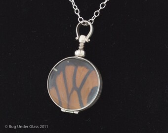 Monarch Butterfly Pendant with real butterfly wing