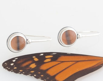 Butterfly Wing Earrings Real Insect Monarch Butterfly Sterling Silver