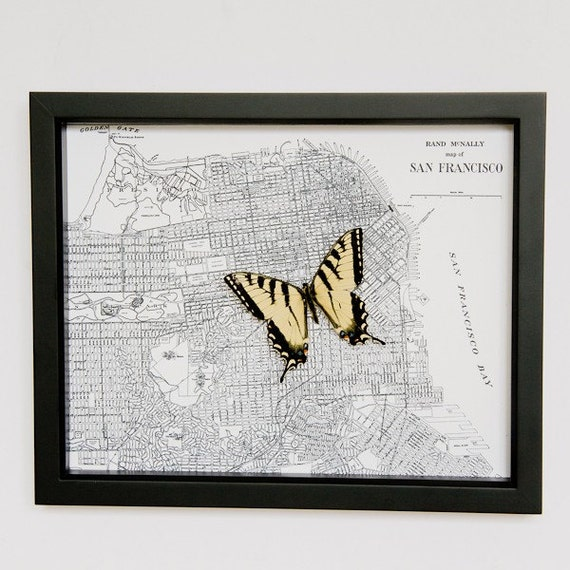 Map of San Francisco with Tiger Swallowtail Butterfly