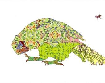 Kakapo Art Print - 13x19 or 8.5x11