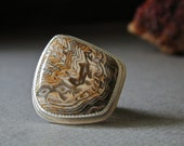 Rare Hell's Canyon Herringbone Petrified Wood Ring in Sterling Silver, Druzy