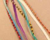 Feather Hair Extension Kit- Bright Color Mix Medium Length- Sale-Free Shipping