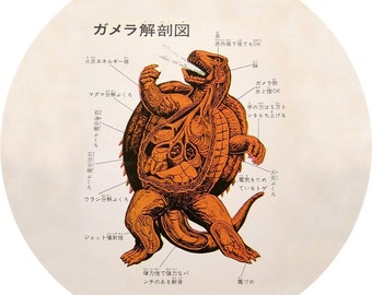 gamera monster anatomy (2.25-in magnet pinback button badge keychain bottle opener pocket mirror)