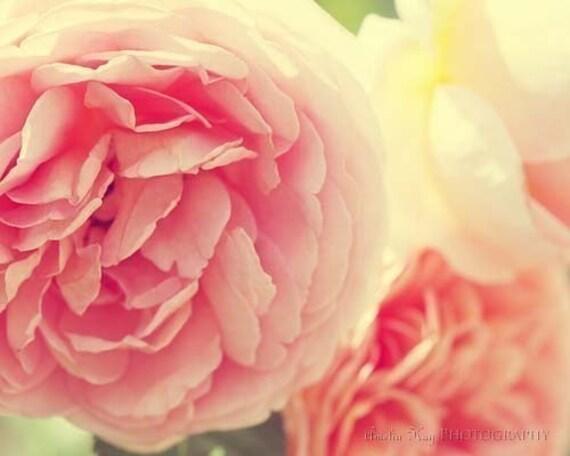 BOGO -  SALE - Loves Whisper - 11X14 Fine Art Photograph - Large Floral Print - IN STOCK