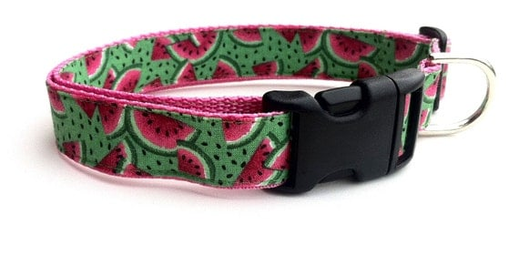 Dog Collar, Custom, Comfortable and Adjustable in Watermelon Print