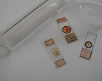 Miniature Microscope Slides (set of 9)