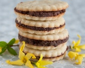 Chocolate Ganache Filled Vanilla Bean Sandwich Cookies - 1 dozen