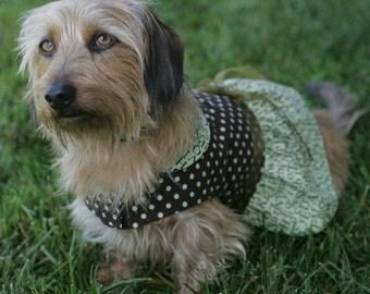 School Daze Sweetheart Dog Dress