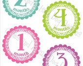 Monthly baby Stickers- Girls monthly bodysuit stickers- Baby month stickers- Monthly milestone stickers- with optional Gerber ONESIE- GRL139