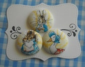 Peter Rabbit- fabric covered button collection 3 - size 60