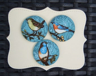 Debbie Mumm-Birds-fabric covered button collection 1- size 60