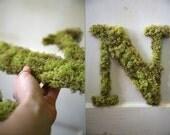 Letter N Custom Moss Door Hanging Initial