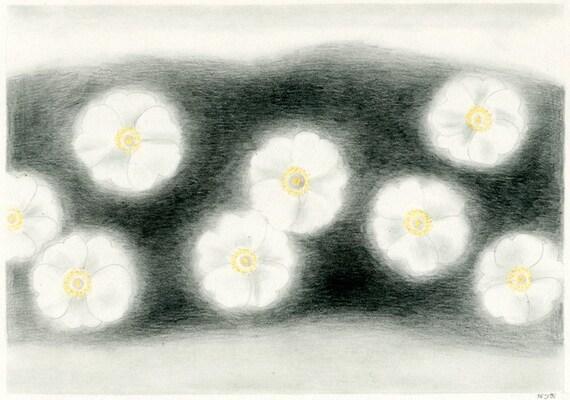 Original drawing - White flowers