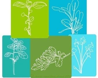 Embroidery Pattern Herbarium PDF