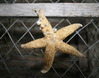 Natural Genuine Beaded STARFISH