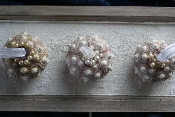 3 Genuine Sputnik Sea Urchin Ornaments: SET OF THREE