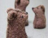 Tiny Bear Family with mini playmat