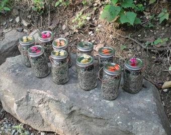 Set of 10, Quart Mason Jar Firefly Lanterns