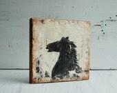 Black Stallion Original Encaustic Painting Horse Rustic Western Cowboy