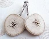 Oosik Slice Earrings