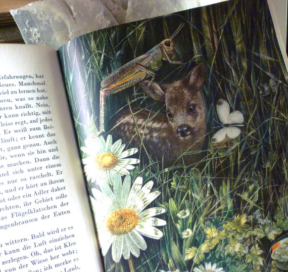 C1946  Bambi Geschrieben Auf Deutsch by Felix Salten