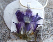 Midnight purple/blue Lobelia Pendant/Neckace. Real pressed  flower bloom behind 1 inch glass square.