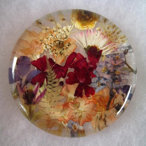 SALE.  CLEARANCE.  Rainbow in color Dried pressed Vignette behind glass.  Pressed flowers ,petals and seeds behind 2.5 inch glass round.