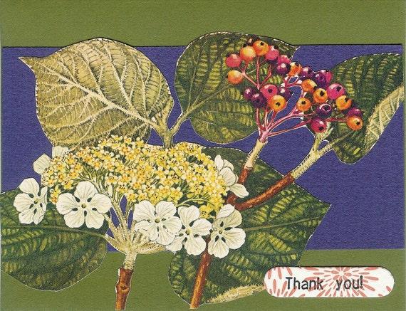 Botany thank-you 4-card set and handmade envelopes
