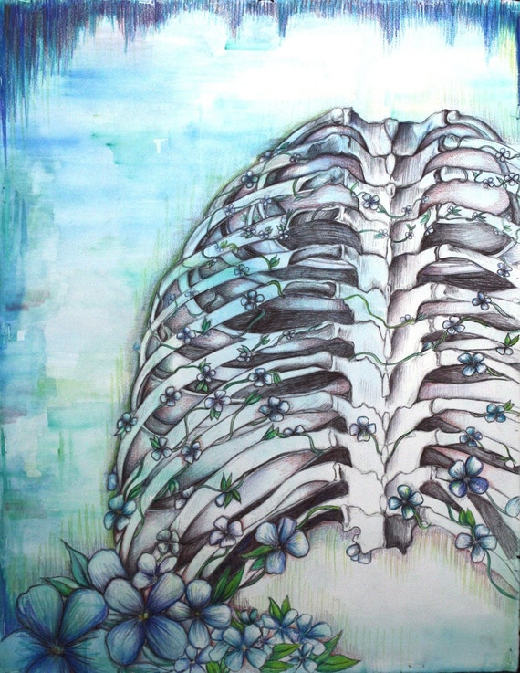 Rib Cage And Flowers Drawing Forget-me-not Ribcage Original