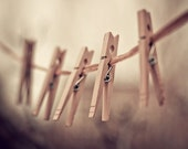 clothespins photograph / clothes pin, rustic, earth tones, laundry, clothesline, brown, still life / family of five / 8x10 fine art photo