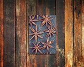 star anise spice photo magnet / kitchen decor, fine art photograph, star, brown, holiday, christmas, snowflake