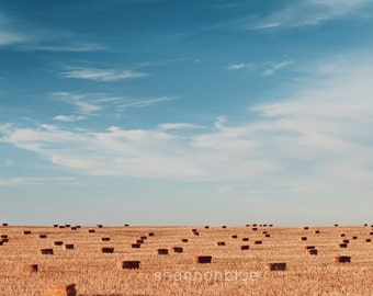 farm landscape photography / field, hay bales, sky, minimalist / blue, golden brown / wide open spaces / 8x12 fine art photography