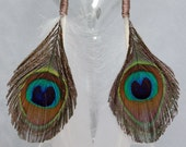 Wire Wrapped Peacock n White Feather Earrings with Niobium Ear Wires, Peacock Feather Earrings, Hippie Earrings, Boho Earrings