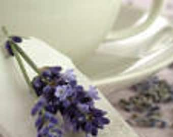1 oz LAVENDER Candle Soap Fragrance Oil Premium Grade Candle Soap Bath Bomb Supplies