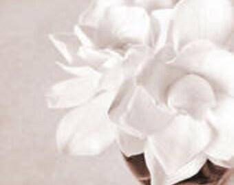 4 oz GARDENIA Candle Soap Fragrance Oil Premium Grade