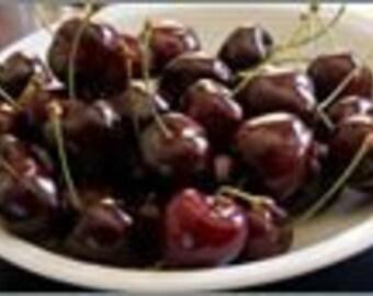 1 oz Black Cherry Candle Soap Fragrance Oil Premium Grade
