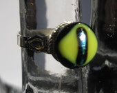 Fused Glass Ring Dichroic Reptilian Eye