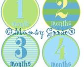 Monthly Baby Boy Age Stickers Modern Boy Nautical 12 Montlhy Baby stickers Boy Milestones