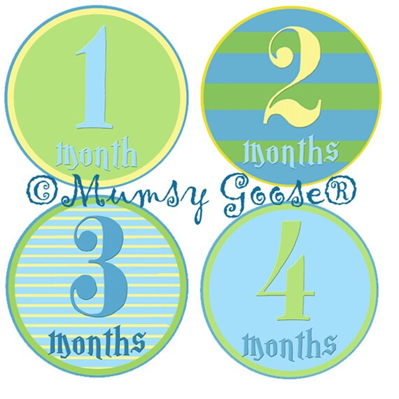 Monthly Baby Boy Stickers Modern Boy Nautical 12 Montlhy Baby stickers Boy Milestones