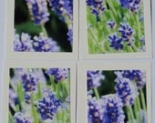Mini Lavender Thank You Cards