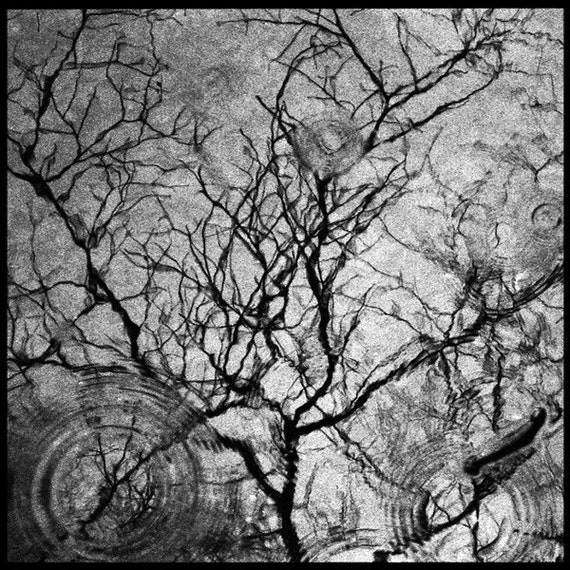 LARGE What lives at the bottom of the well Fine Art Photograph 16x16