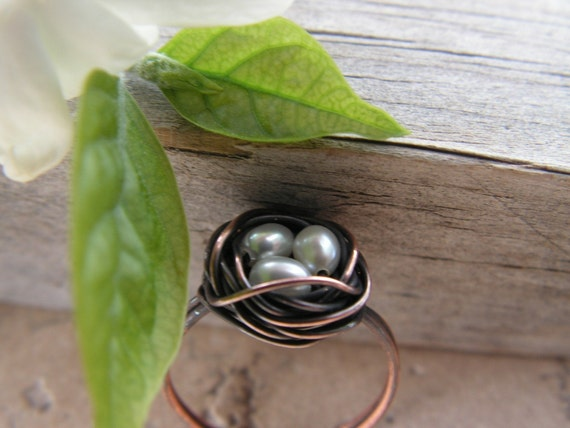 Nest ring in oxidized COPPER