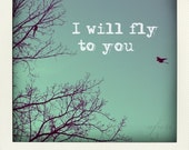 I will fly to you, Fine art photograph